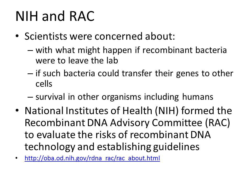 NIH and RAC Scientists were concerned about: – with what might happen if recombinant bacteria were to leave the lab – if such bacteria could transfer