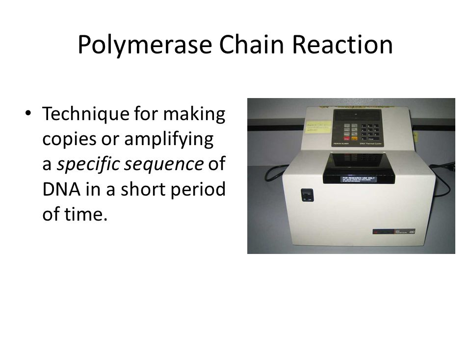 Polymerase Chain Reaction Technique for making copies or amplifying a specific sequence of DNA in a short period of time.