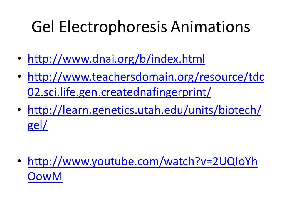 Gel Electrophoresis Animations http://www.dnai.org/b/index.html http://www.teachersdomain.org/resource/tdc 02.sci.life.gen.creatednafingerprint/ http: