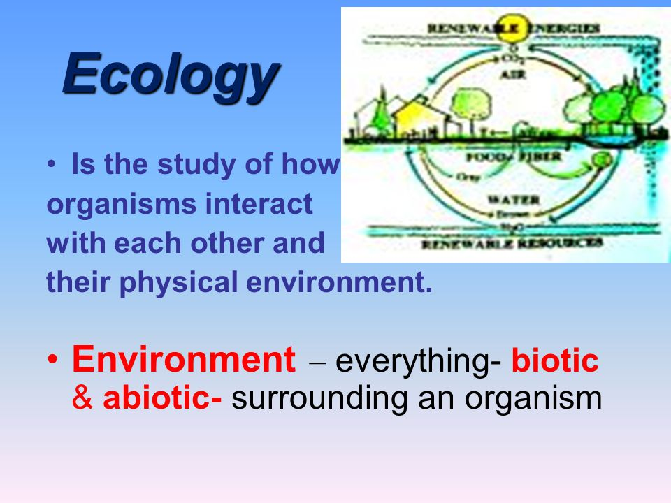 Ecology Ecology Is the study of how organisms interact with each other and their physical environment. Environment – everything- biotic & abiotic- sur