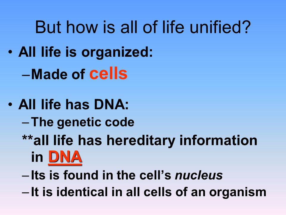 Cells represent Unity because they are features that all organisms have in common.