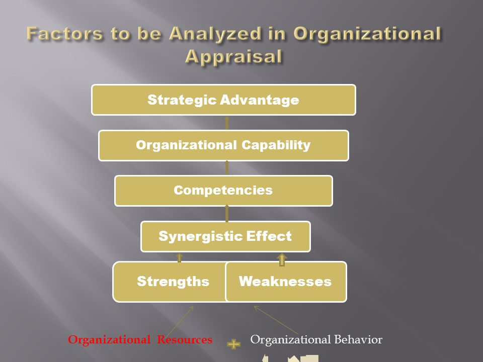 Strategic Advantage Organizational CapabilityCompetencies Synergistic Effect Strengths Weaknesses Organizational Resources Organizational Behavior