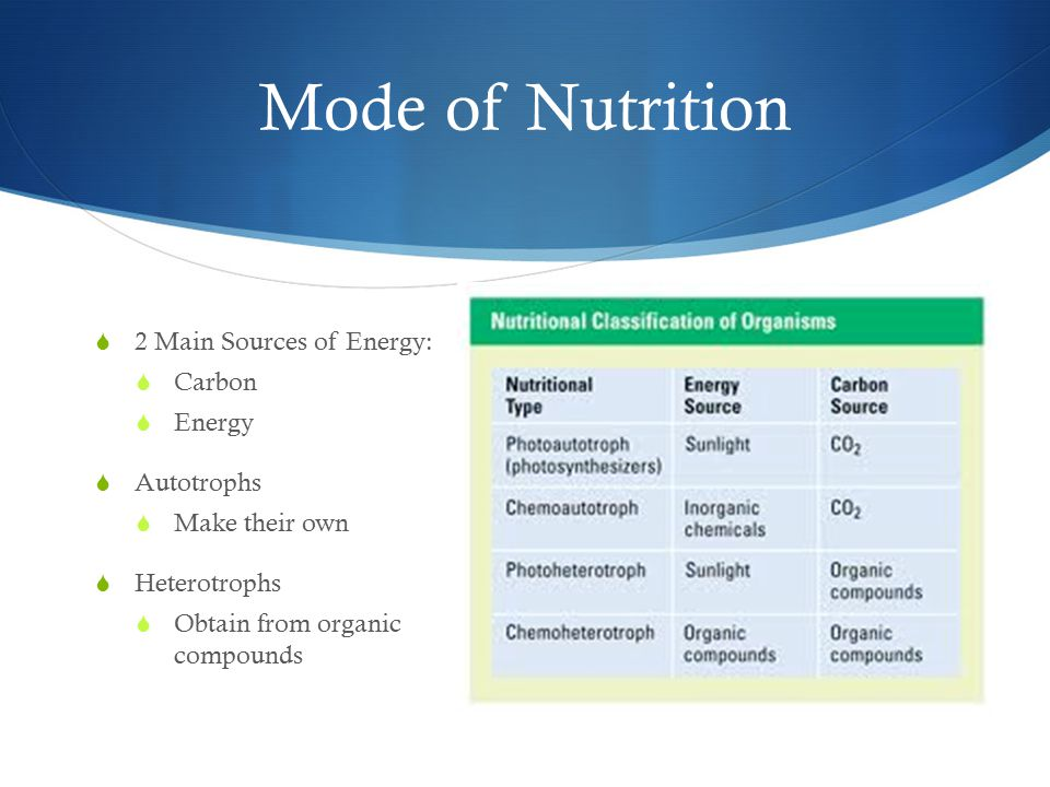 Mode of Nutrition  2 Main Sources of Energy:  Carbon  Energy  Autotrophs  Make their own  Heterotrophs  Obtain from organic compounds