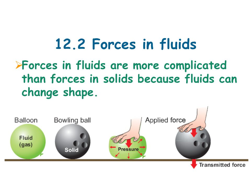 12.2 Forces in fluids  Forces in fluids are more complicated than forces in solids because fluids can change shape.