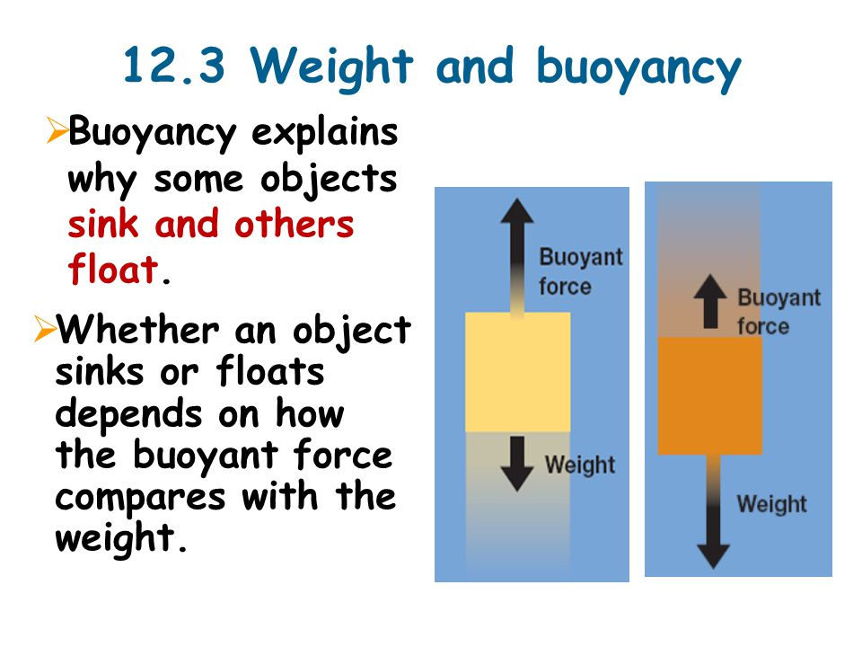 12.3 Weight and buoyancy  Buoyancy explains why some objects sink and others float.