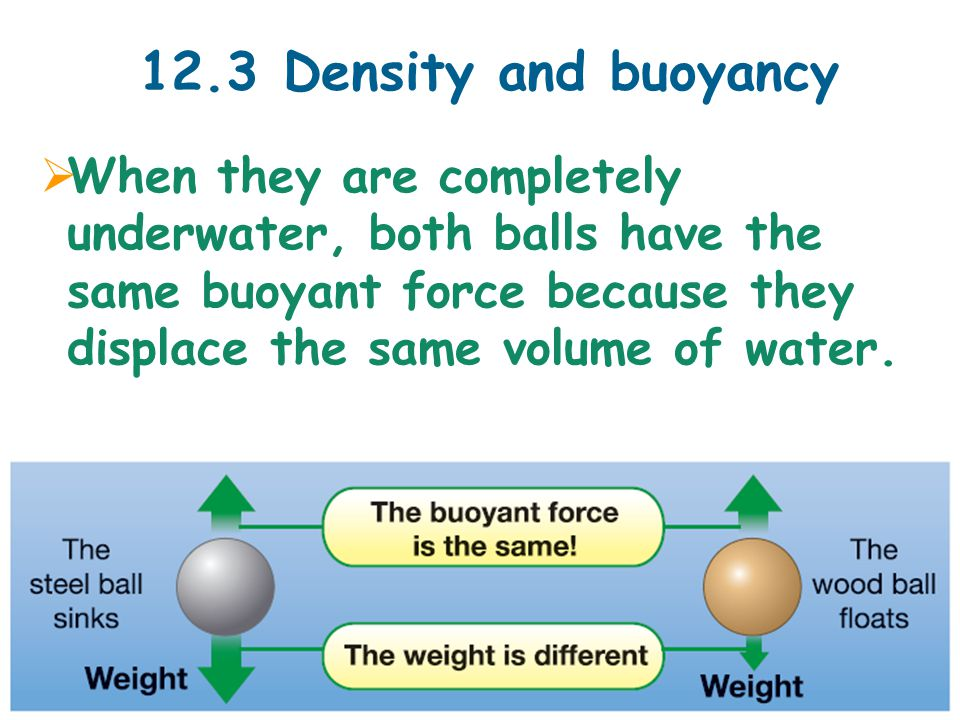 12.3 Density and buoyancy  When they are completely underwater, both balls have the same buoyant force because they displace the same volume of water.