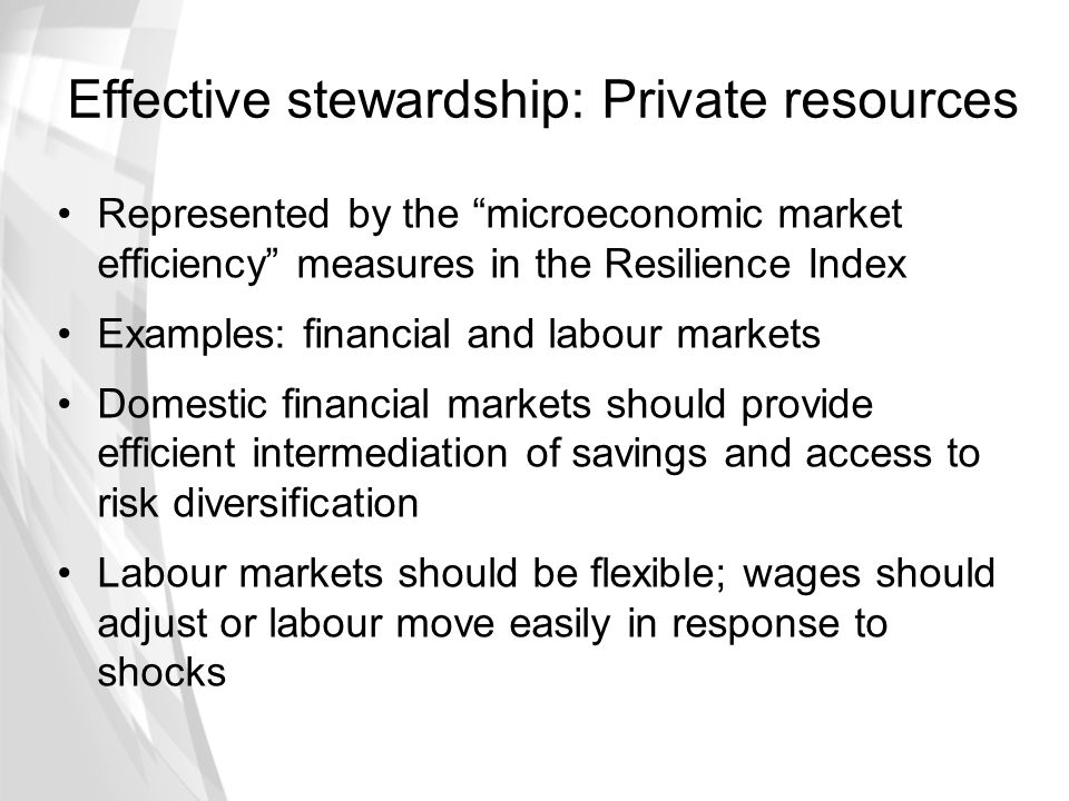 "Effective stewardship: Private resources Represented by the ""microeconomic market efficiency"" measures in the Resilience Index Examples: financial and"