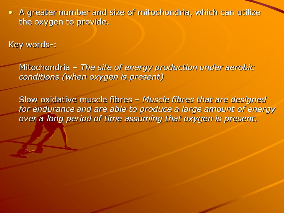 VO2 max –The maximal amount of oxygen that can be taken in, transported and consumed by the working muscles per minute.