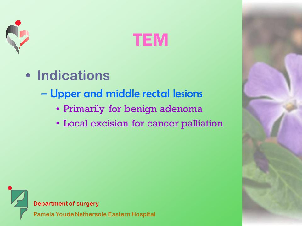 Department of surgery Pamela Youde Nethersole Eastern Hospital TEM Indications –Upper and middle rectal lesions Primarily for benign adenoma Local excision for cancer palliation
