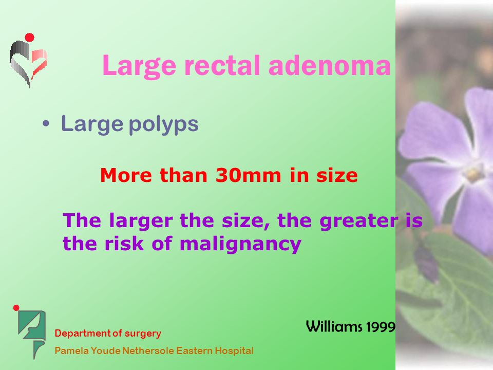 Department of surgery Pamela Youde Nethersole Eastern Hospital Large rectal adenoma Large polyps More than 30mm in size The larger the size, the greater is the risk of malignancy Williams 1999