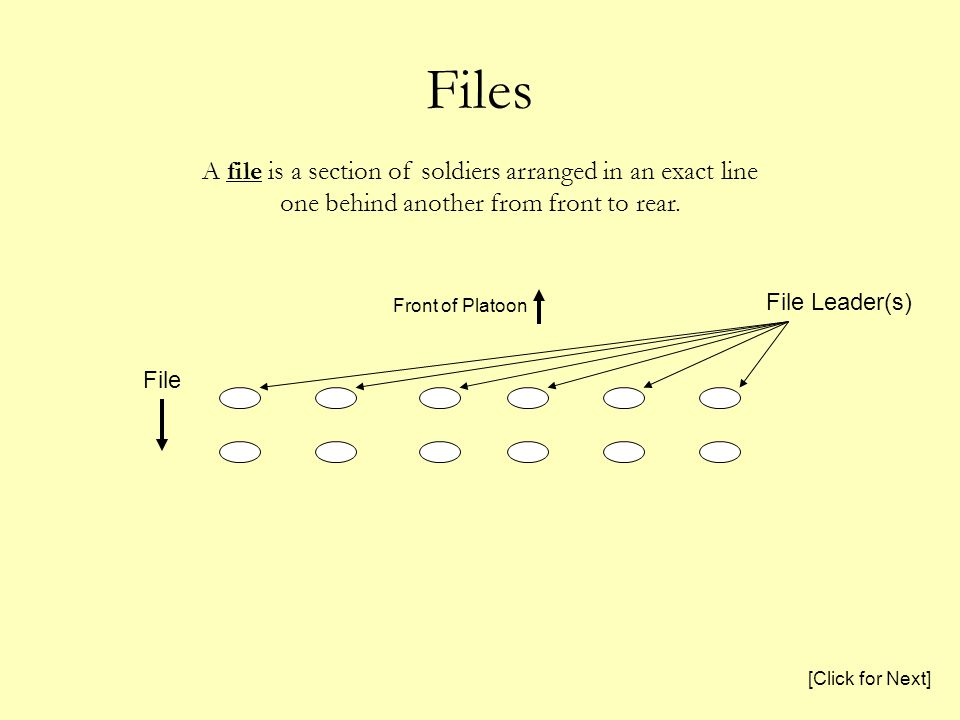 Files File Front of Platoon File Leader(s) A file is a section of soldiers arranged in an exact line one behind another from front to rear. [Click for