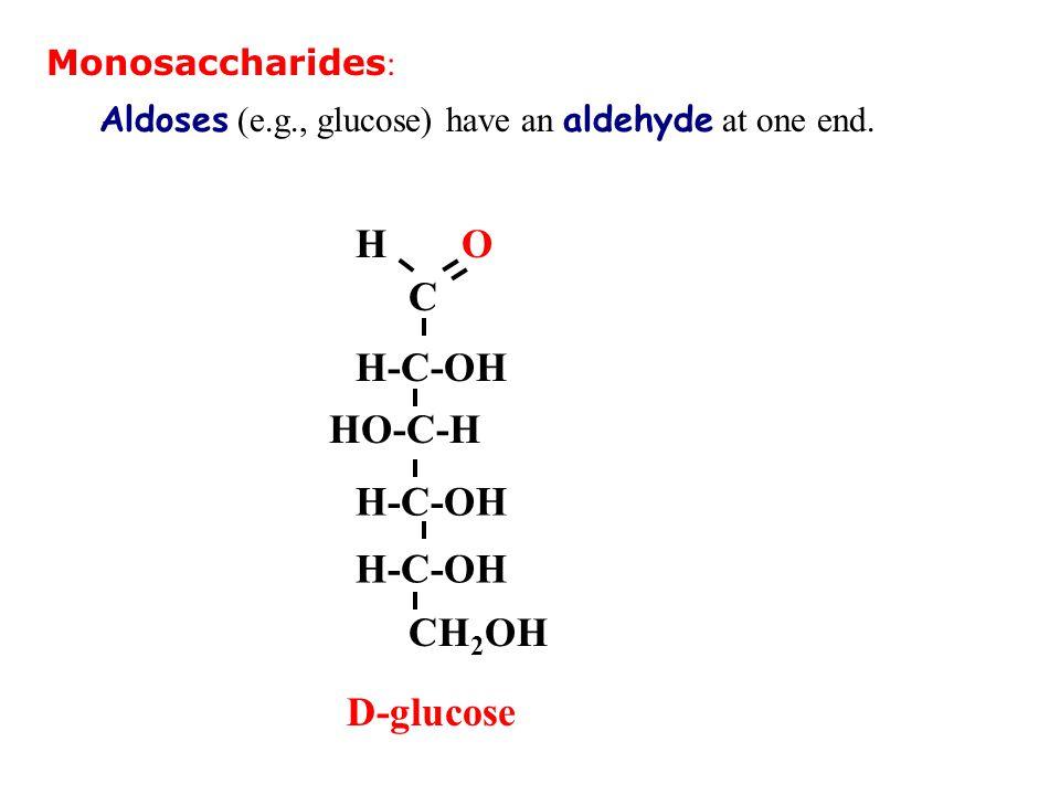 Monosaccharides : Aldoses (e.g., glucose) have an aldehyde at one end. C H-C-OH CH 2 OH HO-C-H OH H-C-OH D-glucose