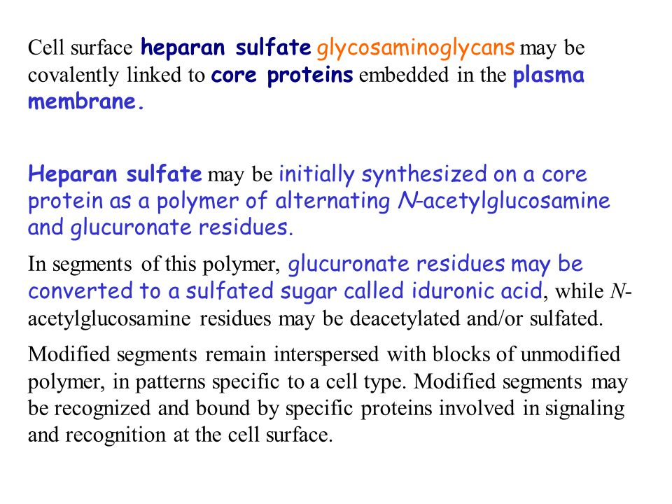 Cell surface heparan sulfate glycosaminoglycans may be covalently linked to core proteins embedded in the plasma membrane. Heparan sulfate may be init