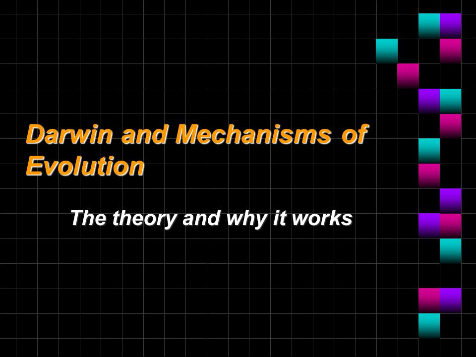 Darwin and Mechanisms of Evolution The theory and why it works