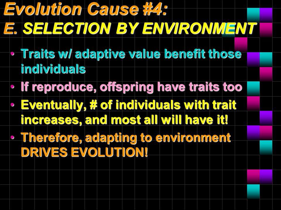 Evolution Cause #4: E.