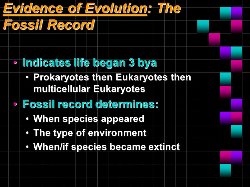 Evidence of Evolution: The Fossil Record Indicates life began 3 byaIndicates life began 3 bya Prokaryotes then Eukaryotes then multicellular Eukaryote