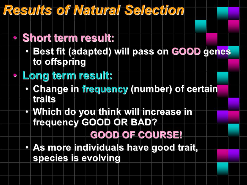 Results of Natural Selection Short term result:Short term result: Best fit (adapted) will pass on GOOD genes to offspringBest fit (adapted) will pass on GOOD genes to offspring Long term result:Long term result: Change in frequency (number) of certain traitsChange in frequency (number) of certain traits Which do you think will increase in frequency GOOD OR BAD?Which do you think will increase in frequency GOOD OR BAD.