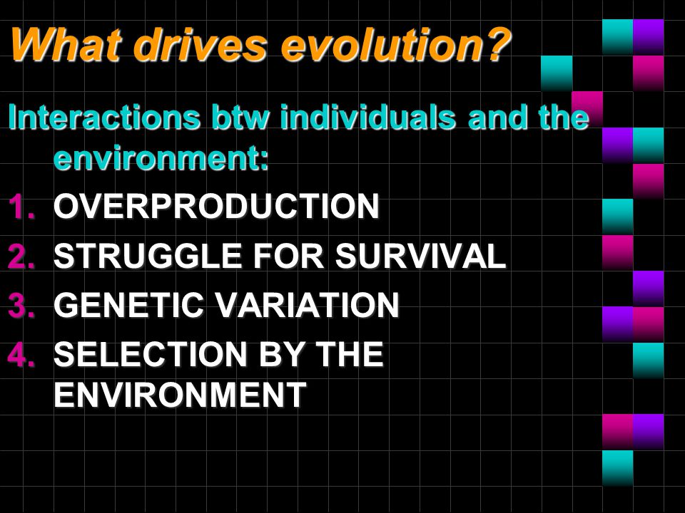 What drives evolution.