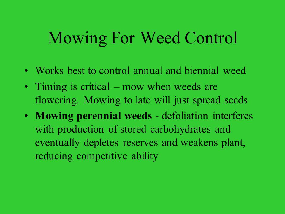 WHY MOW Safety- Sight Distance Prevent build up of wind blown debris Mow around signs and guardrail Public pressure IRVM – Integrated Roadside Vegetation Management –weed control Fire suppression