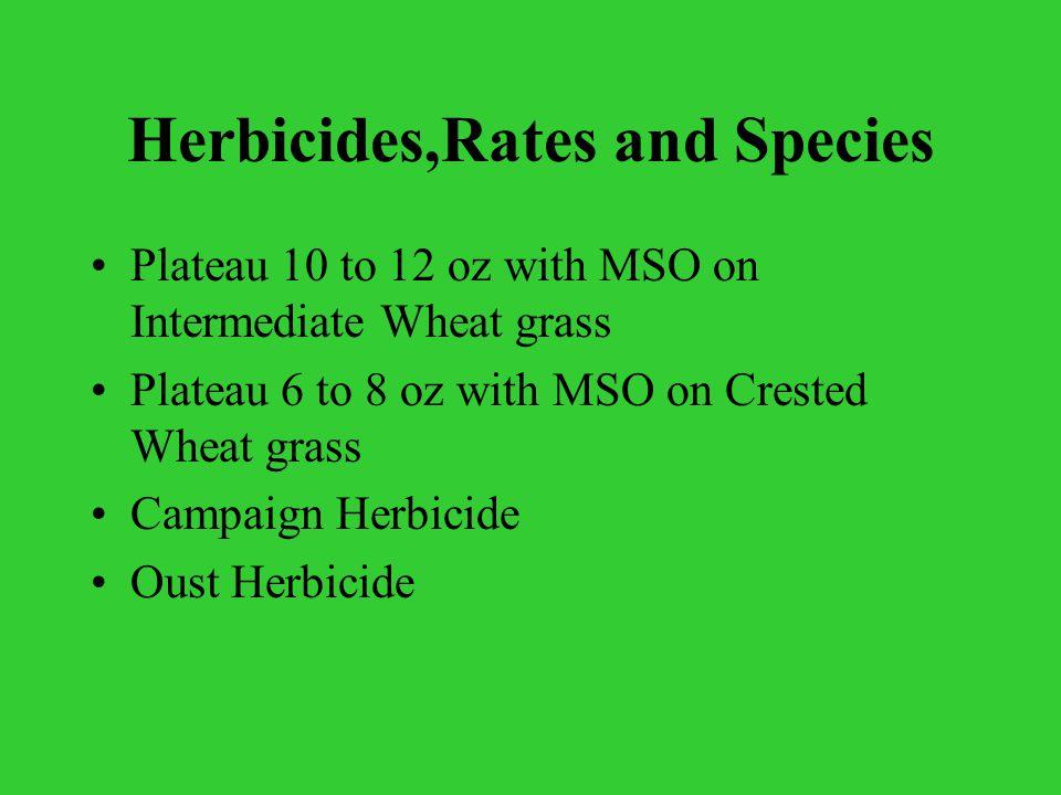 Plateau Herbicide