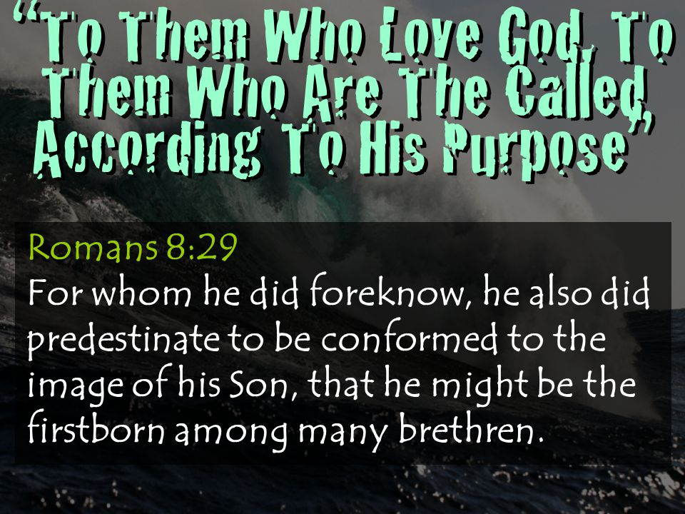 """""""To Them Who Love God, To Them Who Are The Called According To His Purpose"""" Romans 8:29 For whom he did foreknow, he also did predestinate to be confo"""