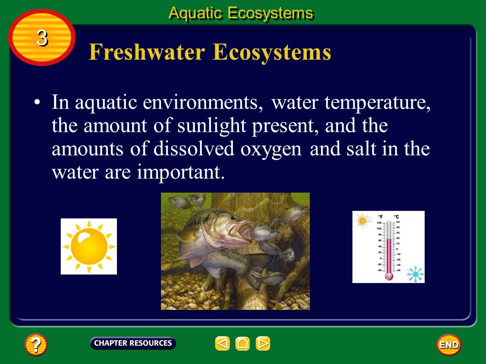Aquatic Ecosystems 6.L.2.3 Summarize how the abiotic factors (such as temperature, water, sunlight, and soil quality) of biomes (freshwater, marine, f