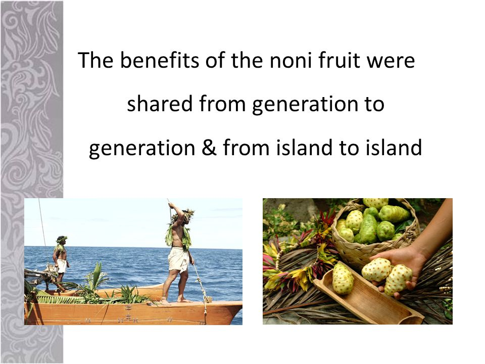 The benefits of the noni fruit were shared from generation to generation & from island to island