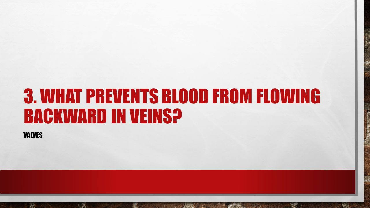 3. WHAT PREVENTS BLOOD FROM FLOWING BACKWARD IN VEINS? VALVES