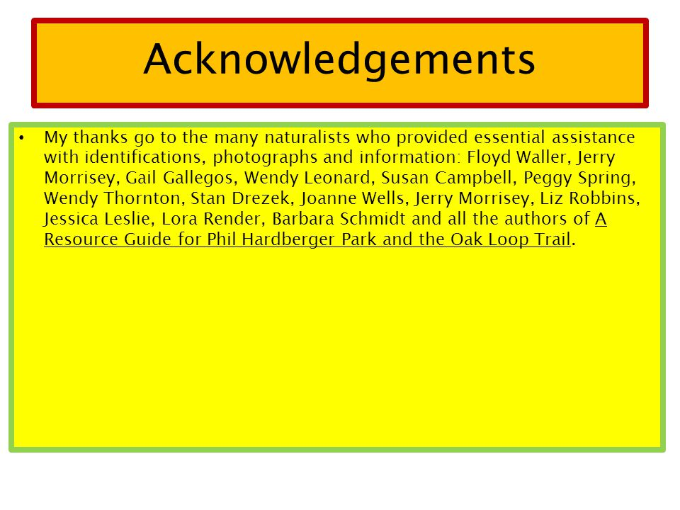 Acknowledgements My thanks go to the many naturalists who provided essential assistance with identifications, photographs and information: Floyd Waller, Jerry Morrisey, Gail Gallegos, Wendy Leonard, Susan Campbell, Peggy Spring, Wendy Thornton, Stan Drezek, Joanne Wells, Jerry Morrisey, Liz Robbins, Jessica Leslie, Lora Render, Barbara Schmidt and all the authors of A Resource Guide for Phil Hardberger Park and the Oak Loop Trail.