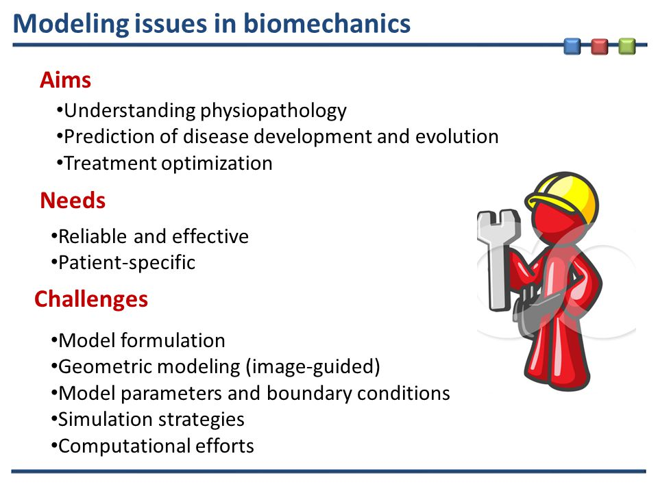 Modeling issues in biomechanics Aims Needs Challenges Understanding physiopathology Prediction of disease development and evolution Treatment optimization Reliable and effective Patient-specific Model formulation Geometric modeling (image-guided) Model parameters and boundary conditions Simulation strategies Computational efforts