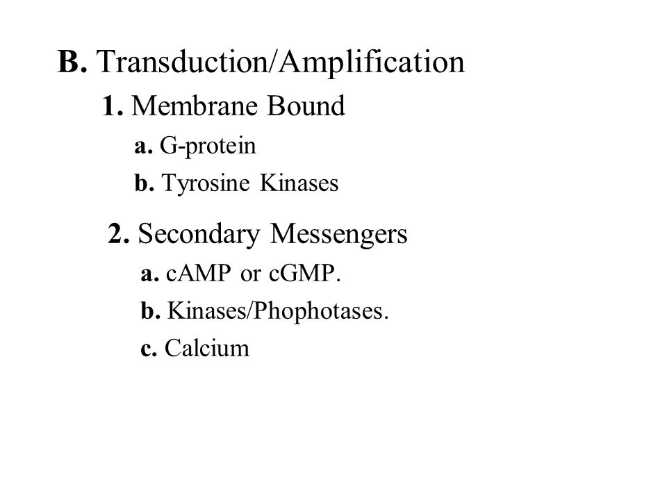 B. Transduction/Amplification 2. Secondary Messengers a. cAMP or cGMP. b. Kinases/Phophotases. c. Calcium 1. Membrane Bound a. G-protein b. Tyrosine K
