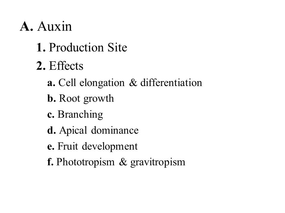 A. Auxin 1. Production Site 2. Effects a. Cell elongation & differentiation b. Root growth c. Branching d. Apical dominance e. Fruit development f. Ph