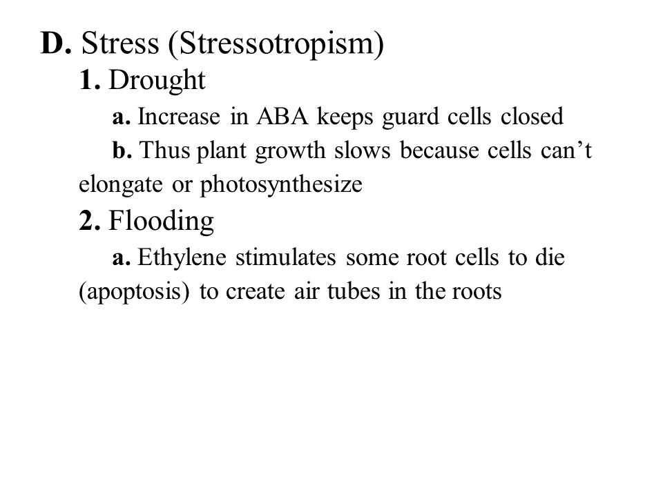 D. Stress (Stressotropism) 1. Drought a. Increase in ABA keeps guard cells closed b. Thus plant growth slows because cells can't elongate or photosynt