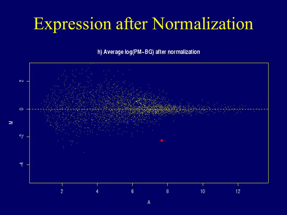 Expression after Normalization