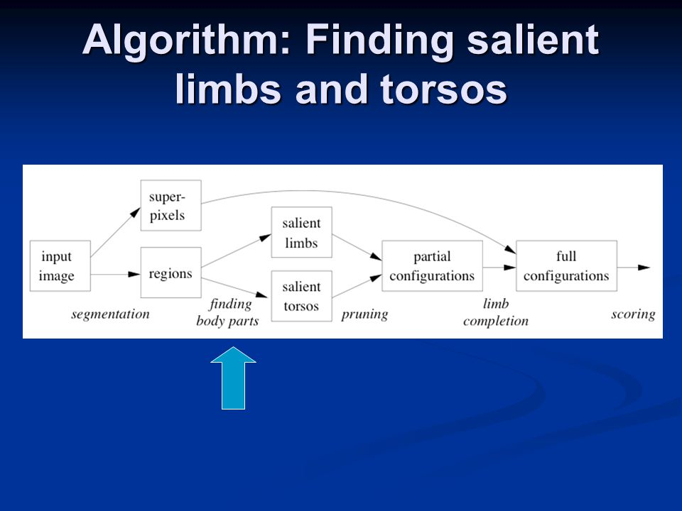 Algorithm: Finding salient limbs and torsos