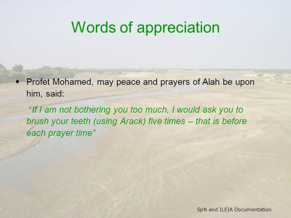 SpN and ILEIA Documentation Words of appreciation  Profet Mohamed, may peace and prayers of Alah be upon him, said: If I am not bothering you too much, I would ask you to brush your teeth (using Arack) five times – that is before each prayer time