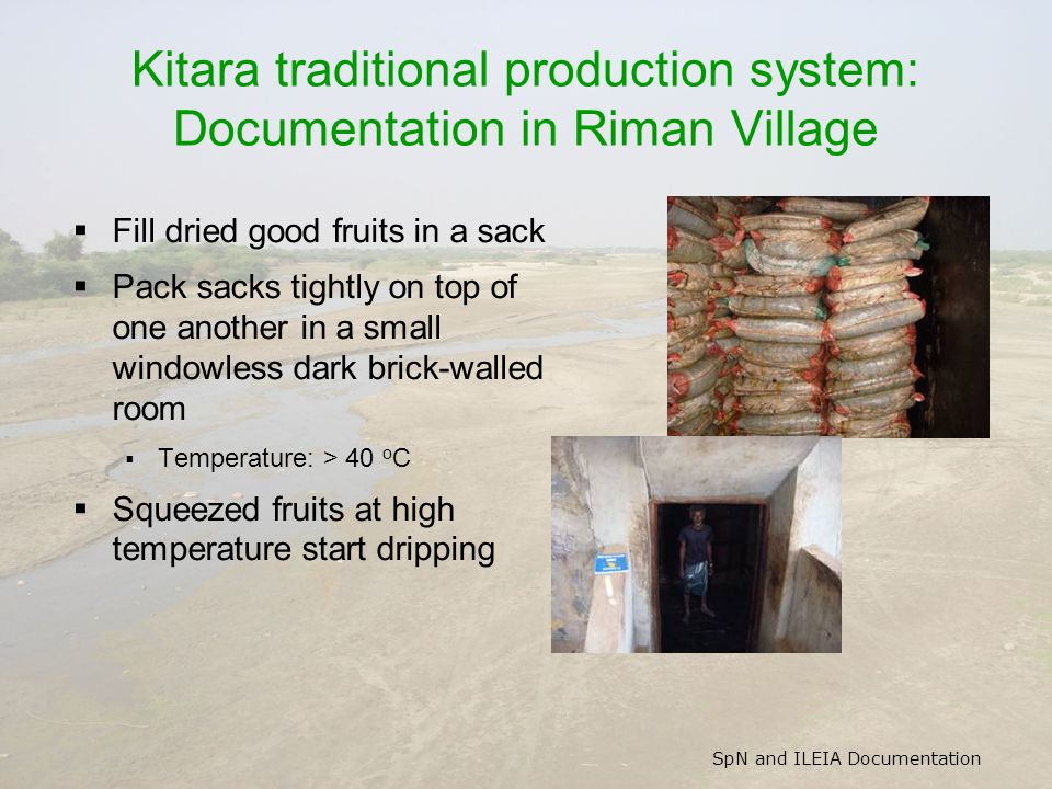 SpN and ILEIA Documentation Kitara traditional production system: Documentation in Riman Village  Fill dried good fruits in a sack  Pack sacks tight
