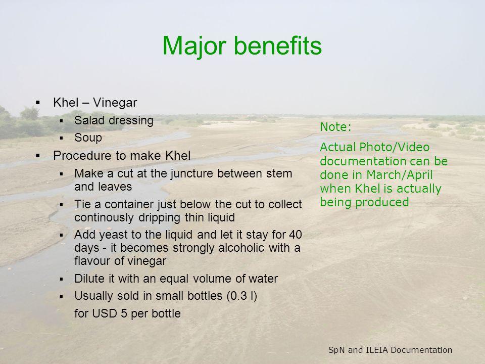 SpN and ILEIA Documentation Major benefits  Khel – Vinegar  Salad dressing  Soup  Procedure to make Khel  Make a cut at the juncture between stem
