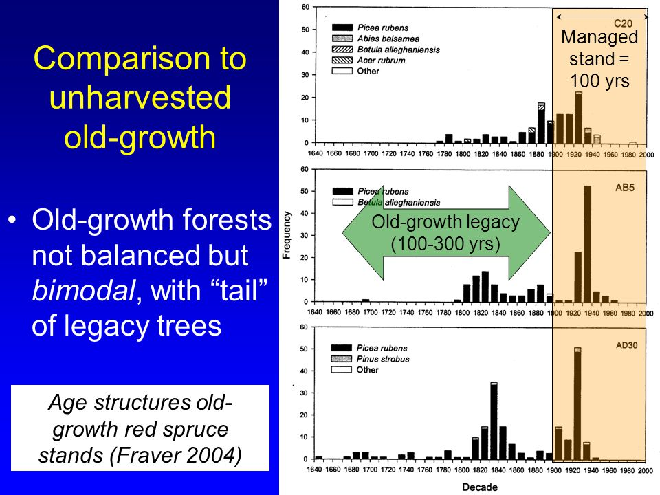 Comparison to unharvested old-growth Old-growth forests not balanced but bimodal, with tail of legacy trees Age structures old- growth red spruce stands (Fraver 2004) Old-growth legacy (100-300 yrs) Managed stand = 100 yrs