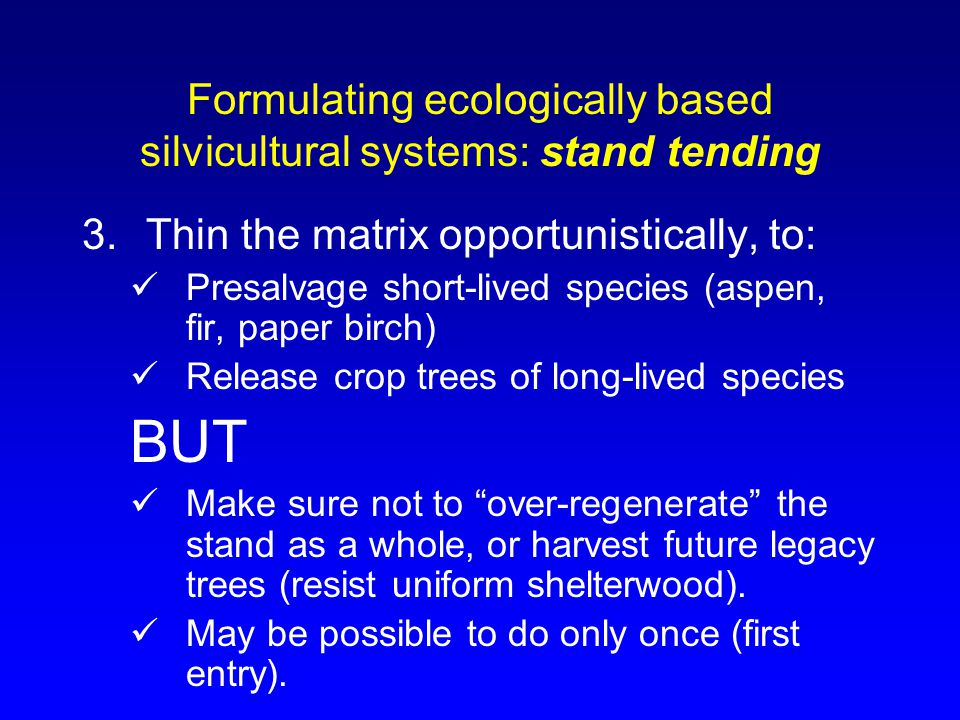 Formulating ecologically based silvicultural systems: stand tending 3.Thin the matrix opportunistically, to: Presalvage short-lived species (aspen, fir, paper birch) Release crop trees of long-lived species BUT Make sure not to over-regenerate the stand as a whole, or harvest future legacy trees (resist uniform shelterwood).