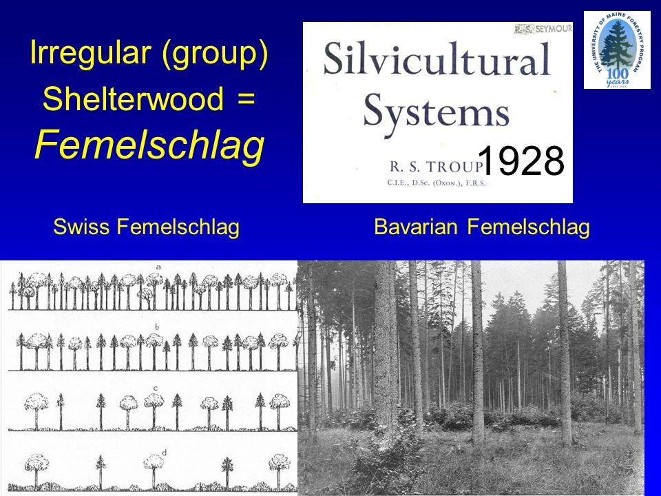 Swiss FemelschlagBavarian Femelschlag Irregular (group) Shelterwood = Femelschlag 1928