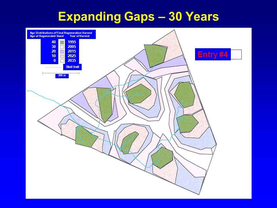Expanding Gaps – 30 Years 1995 2005 2015 2025 2035 40 30 20 10 0 Skid trail Age Distributions of Final Regeneration Harvest Age of Regenerated Stand Y