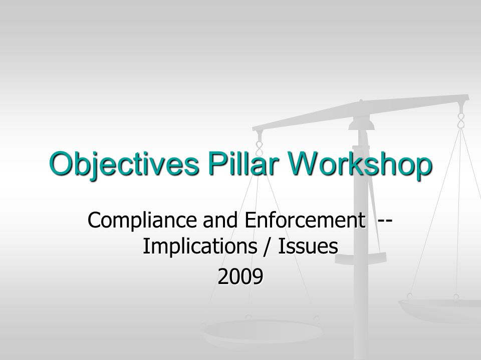 Objectives Pillar Workshop Compliance and Enforcement -- Implications / Issues 2009