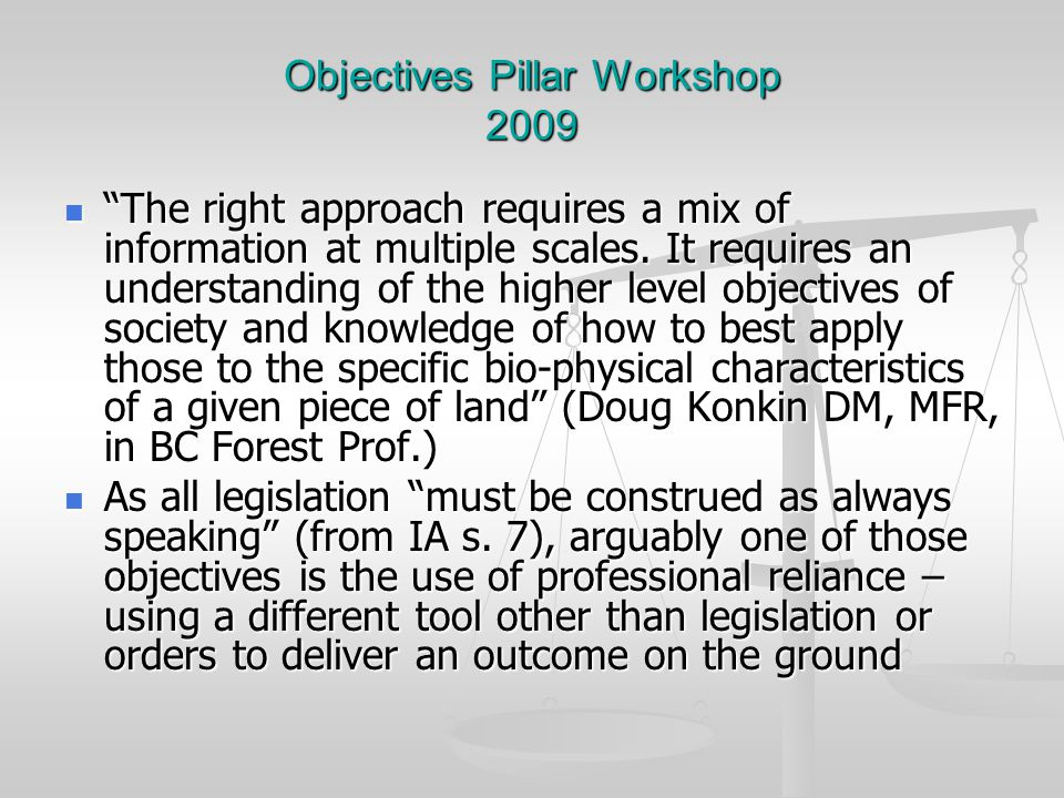 Objectives Pillar Workshop 2009 The right approach requires a mix of information at multiple scales.