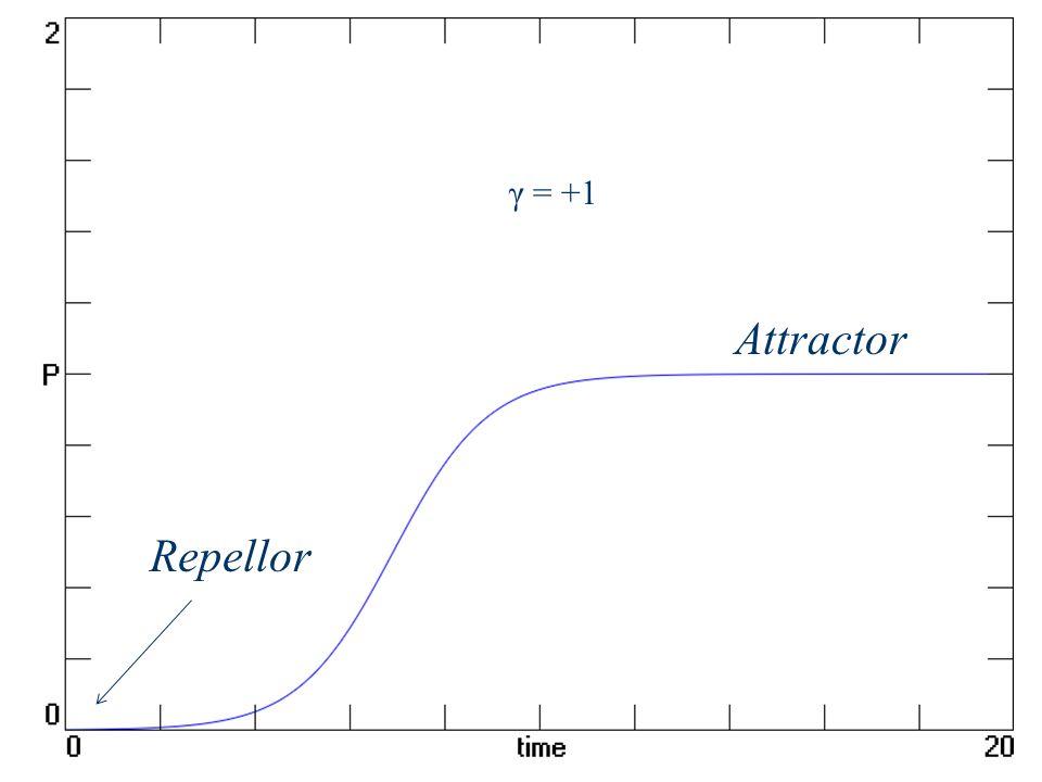 Attractor Repellor γ = +1
