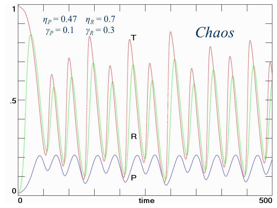 η P = 0.47 γ P = 0.1 η R = 0.7 γ R = 0.3 Chaos