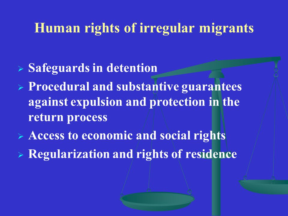 Human rights of irregular migrants   Safeguards in detention   Procedural and substantive guarantees against expulsion and protection in the return process   Access to economic and social rights   Regularization and rights of residence