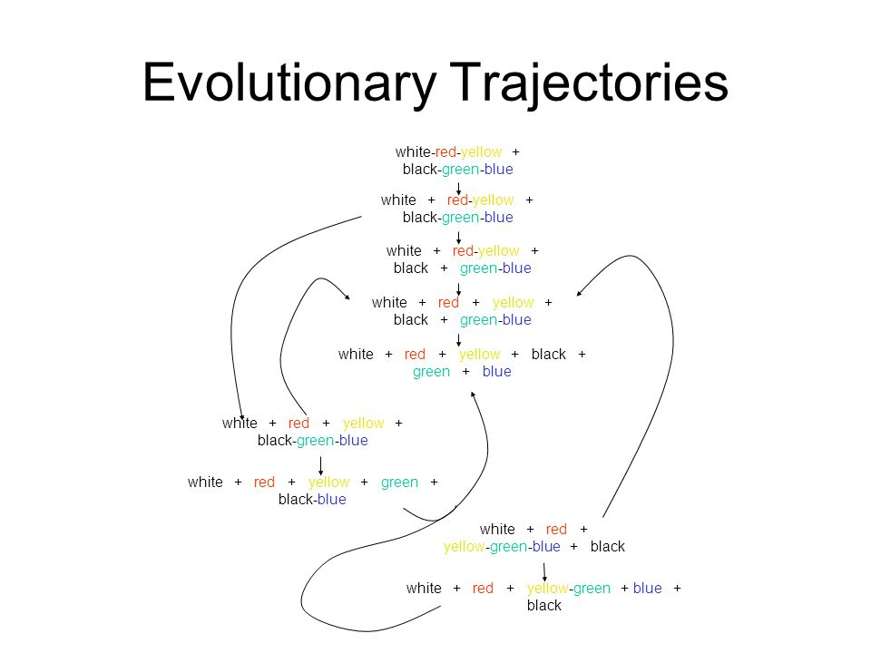 Evolutionary Trajectories white + red + yellow + black-green-blue white + red + yellow + green + black-blue white-red-yellow + black-green-blue white + red-yellow + black-green-blue white + red + yellow + black + green-blue white + red-yellow + black + green-blue white + red + yellow + black + green + blue white + red + yellow-green-blue + black white + red + yellow-green + blue + black