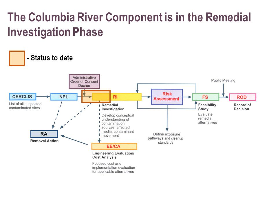 The Columbia River Component is in the Remedial Investigation Phase - Status to date