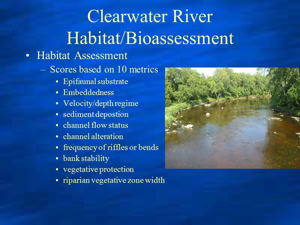 Clearwater River Habitat/Bioassessment Habitat Assessment –Scores based on 10 metrics Epifaunal substrate Embeddedness Velocity/depth regime sediment depostion channel flow status channel alteration frequency of riffles or bends bank stability vegetative protection riparian vegetative zone width